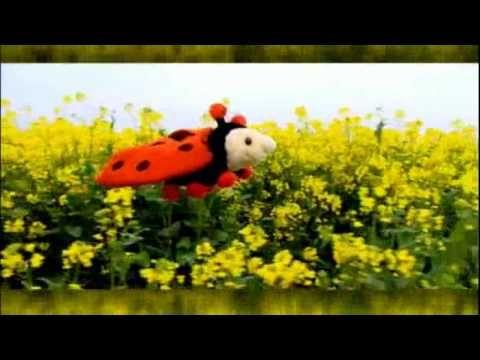 Sesamstraat Pino - Lief lieveheersbeestje! (tellen)