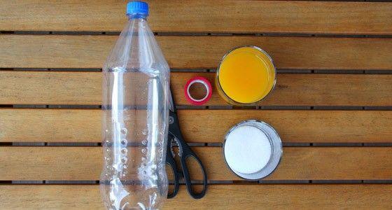 Hilfe gegen Wespen im Garten – Wespenfalle selbst gemacht