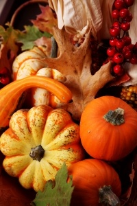 Beautiful gourds and pumpkins