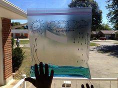 Ciclo agua . Bolsa de plástico transparente y dibujar con un rotulador permanente el mar unas flechas ascendentes en un lado y descendentes en el otro, y en la parte superior, un sol (el de las flechas ascendentes) y unas nubes con lluvia (en el lado de las flechitas descendentes). Una vez pintada la colocamos (podéis pegarla con celo) en una ventana por la que entre el sol y podrá observar perfectamente el ciclo del agua http://actividadesinfantil.com/archives/14458