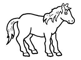 Výsledek obrázku pro obrázky-kůň