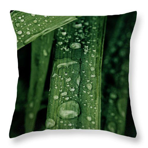 Grass Throw Pillow featuring the photograph Green Grass With Waterdrops by Oksana Ariskina on @pixels and @fineartamerica  Buy print and other product with my fine art photography online: www.oksana-ariskina.pixels.com   #OksanaAriskina  #FineArtPhotography #HomeDecor #FineArtPrint #PrintsForSale #Grass #Plant #Green #Spring #Summer #Drop #Tears #Teardrops #macro #Closeup