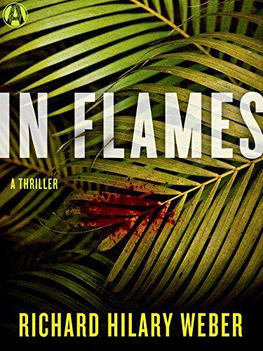 In Flames: A Thriller - Richard Hilary Weber
