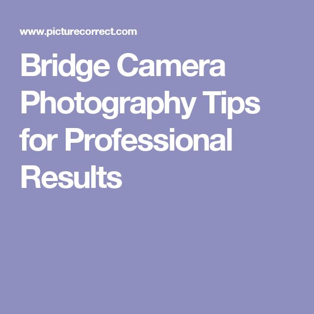 Bridge Camera Photography Tips for Professional Results