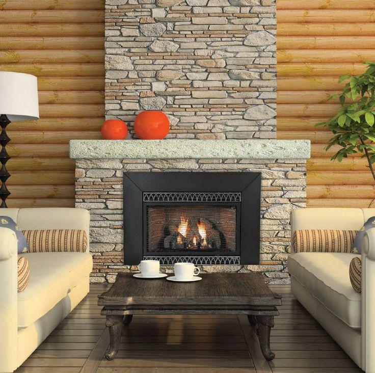Gas Fireplace gas fireplace accessories : 19 best Fireplace insert ideas images on Pinterest