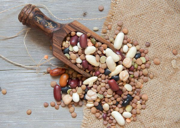 Growing Beans: Sustainable Protein. You can grow a year's supply of beans in a surprisingly small amount of space. Learn how, from MOTHER EARTH NEWS magazine.