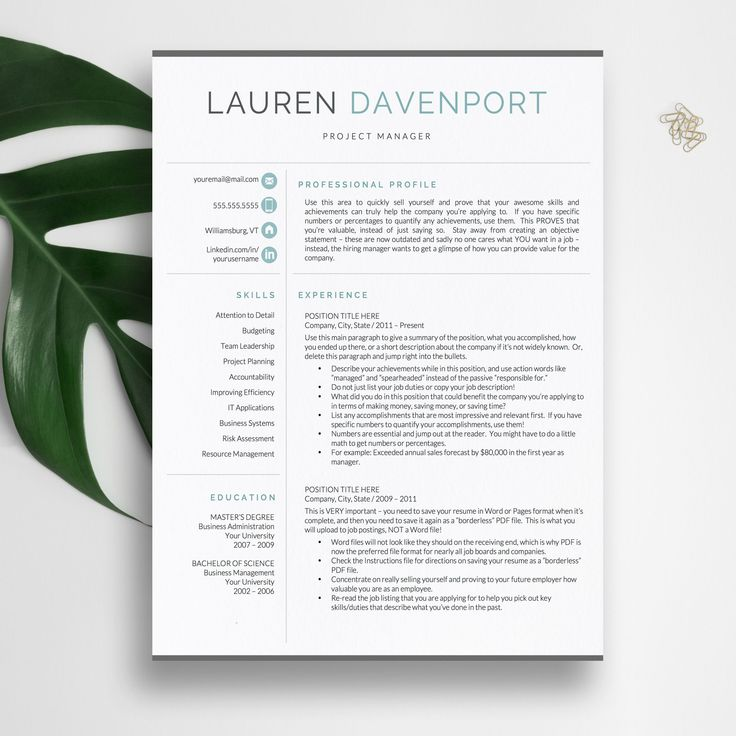 resume template for word  u0026 pages  cv template  modern