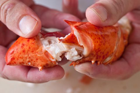 Steaming lobster and finding all the meat.  Basic Steamed Lobster Recipe - CHOW