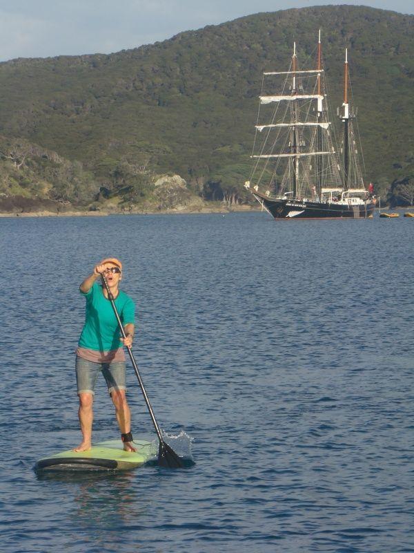 Shiny Paua Stand Up Paddle Boards, Great Barrier Island, Hauraki Gulf, New Zealand