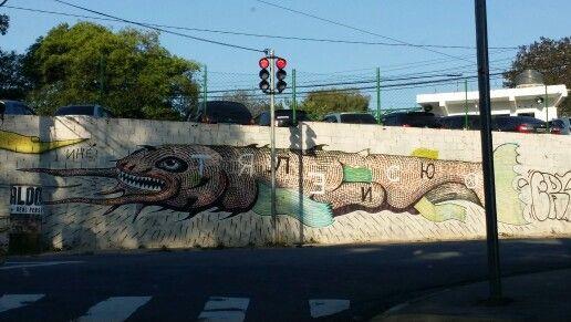 ● Brazilian graffiti artist •TRECO in bairro do Pacaembú - São Paulo city