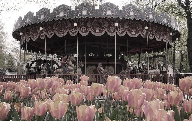 De Efteling! Absoluut het leukste pretpark van Nederland!