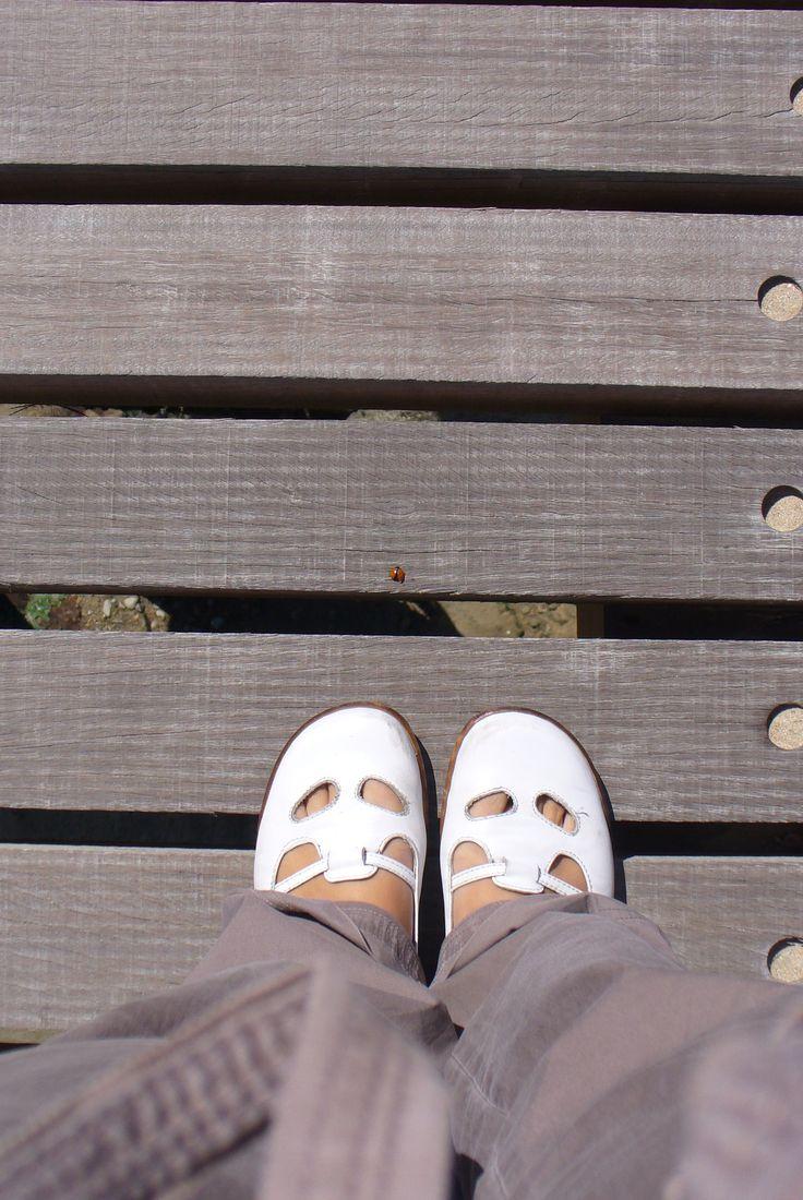 2010, Juno beach, Normandia #fromwhereistand #ladybug