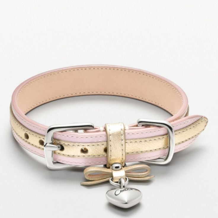 The Metallic Leather Collar With Heart Charm from Coach $78