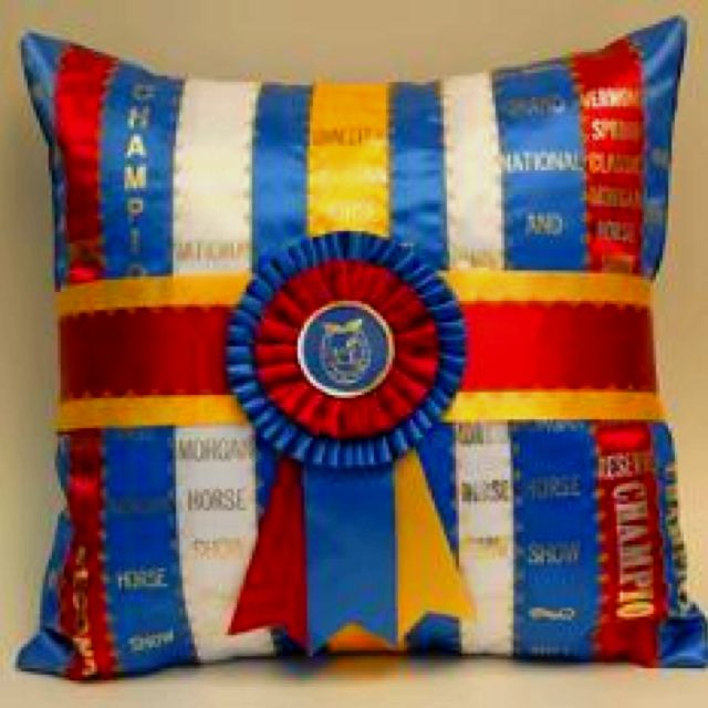 i will turn my old ribbons into horse show ribbon pillows!
