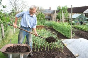 Charles Dowding explains no dig vegetable gardening.   I have his book and do use this method,  it is great.
