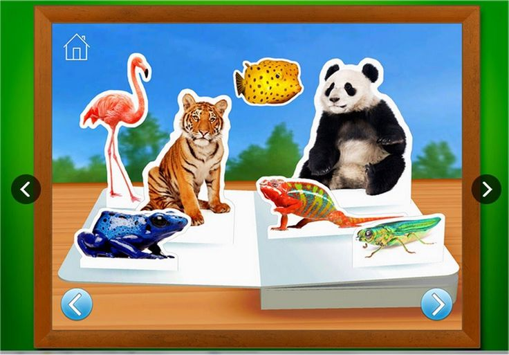 Zoo Animals - Touch, Look, Listen - First Words Animal Learning App for ...