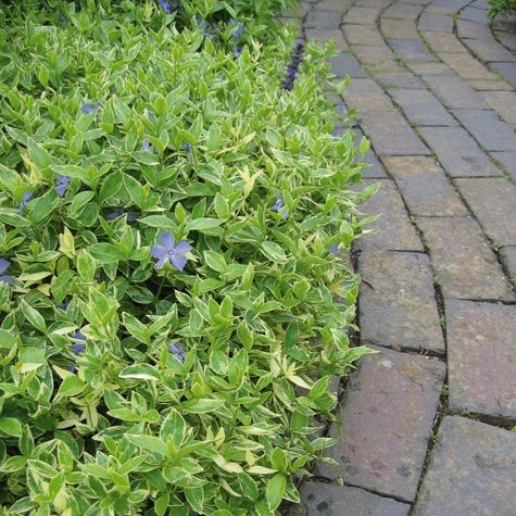 Gi hagen en ny form med stein! | Belegningsstein | Hage og uterom |