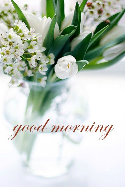 Good Morning Card with White Flowers and Tulips
