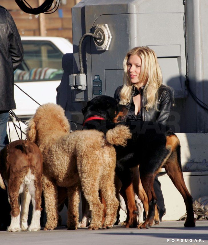Pin for Later: Scarlett Johansson's Sweetest and Sexiest Moments!  Scarlett palled around with some pups while on the set of The Island in 2004.
