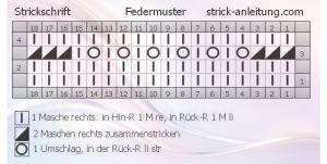 Federmuster schrift