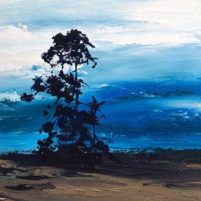 Decrepit pines