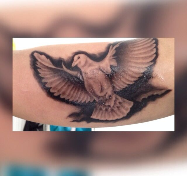 Peace dove black and grey