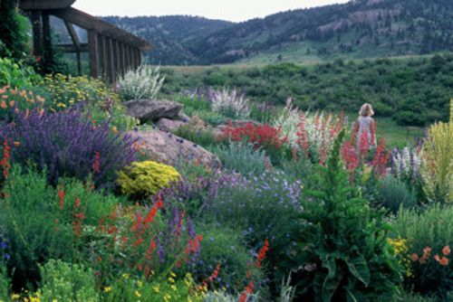 38 best images about xeriscaping on pinterest gardens for Landscaping rocks ogden utah
