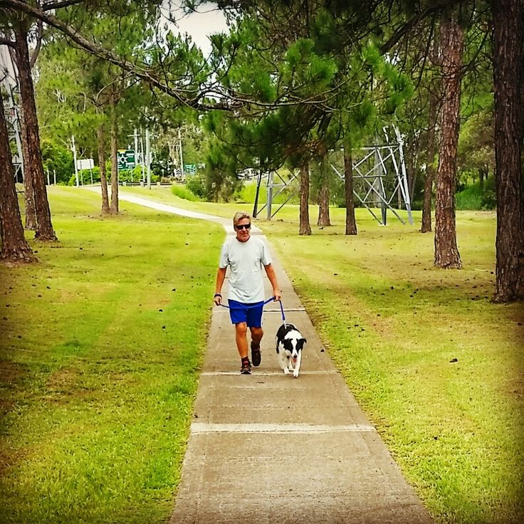 PADDY & I.......HEADING TO THE O.K. CORRAL! ALL OF THOSE TREES ARE HIS........JUST ASK HIM! dogsbigdayout.com.au