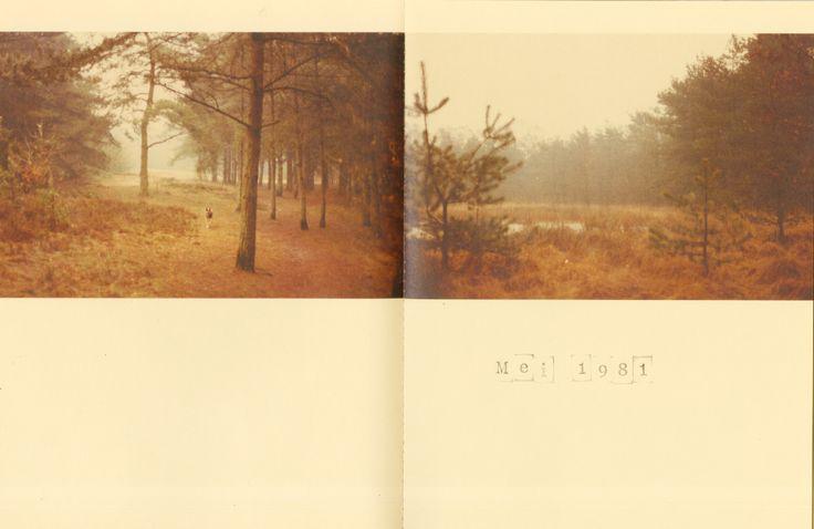 Een pagina uit het boek Het Bos. www.lottebrans.wix.com/studiolotte