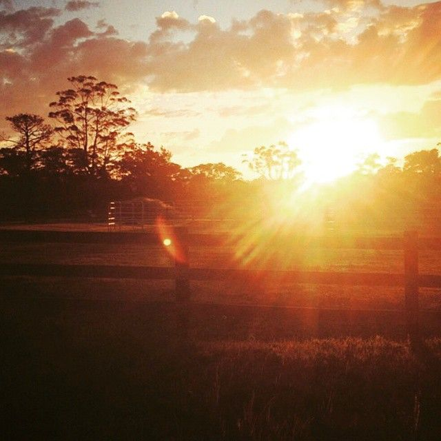 Autumn Sunsets #arcadia #farmlife