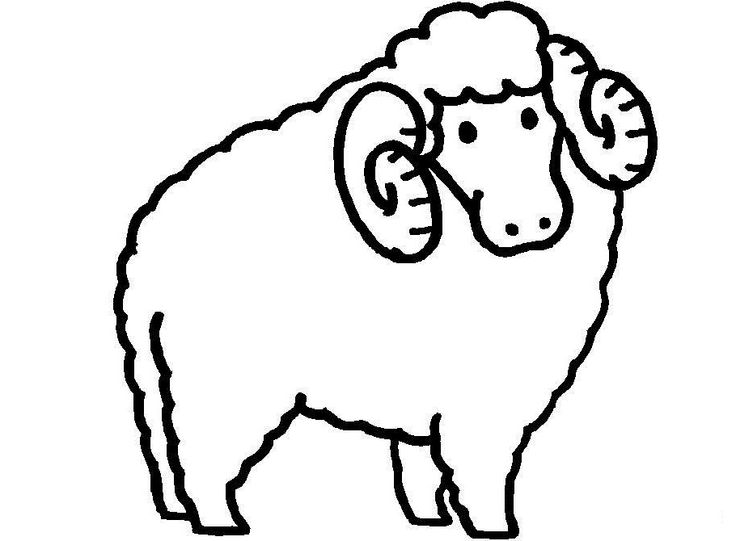 Long horn sheep coloring pages ~ 29 best Children's Ministry Theme Decorating images on ...