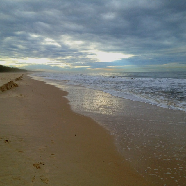 Bribie island Qld Australia