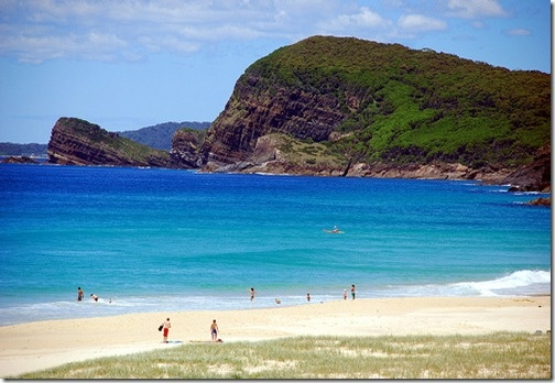 See why they call this Blueys? Right next door to Boomerang Beach, a great Forster area surfing beach.