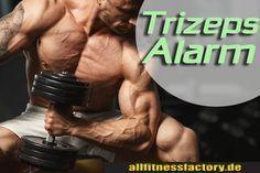 Trizeps Alarm Riesen Masse in 4 Wochen Wer braucht grosse Trizeps? Was ist ein Trizeps? Welche Übungen helfen mir beim Trizeps Aufbau? German Deutsch http://www.allfitnessfactory.de/trizeps-alarm-riesen-masse-in-4-wochen/
