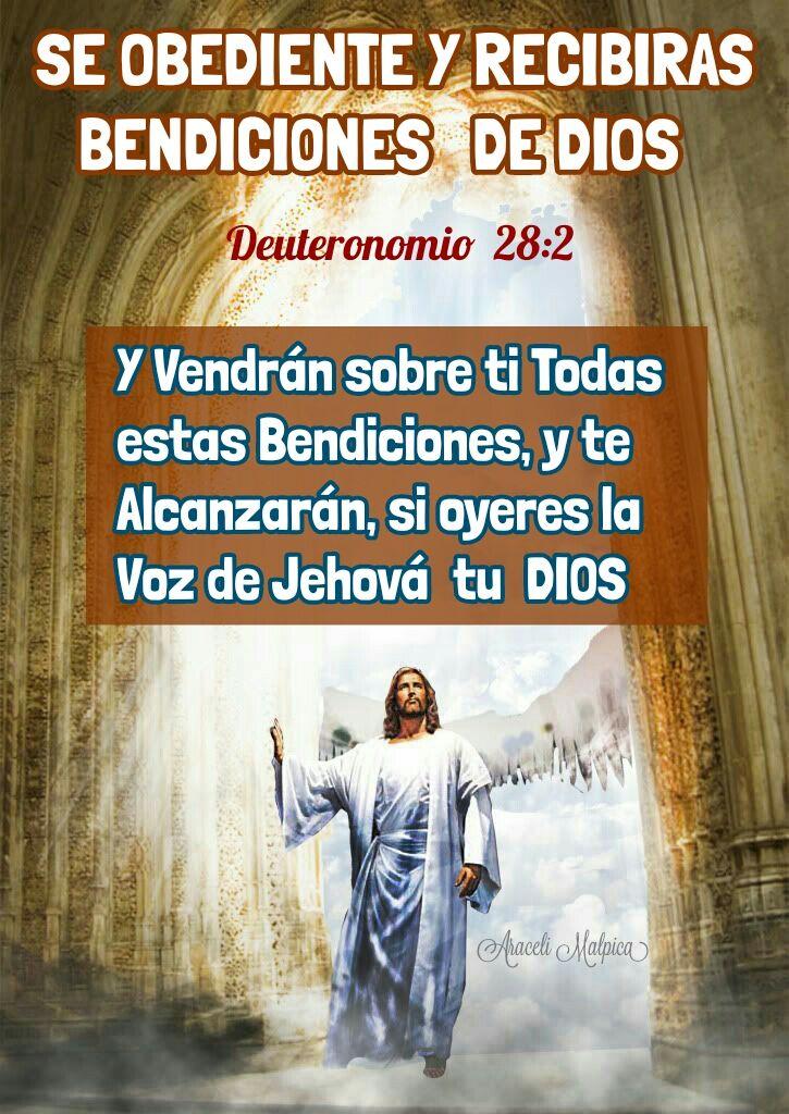 ARACELI MALPICA- Posters : DEUTERONOMIO 28:2 Y vendrán sobre ti todas estas…