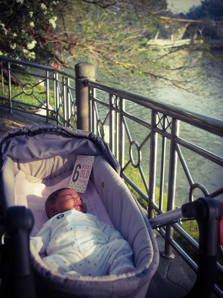so precious! little one comfy in their phil&teds dash carrycot and dash stroller.