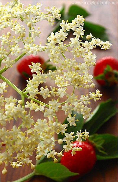 Dżem truskswkowy z kwiatami bzu