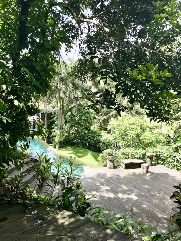 Soulshine is an absolute sanctuary in Ubud | Pool views at Soulshine Hotel + Yoga Retreat in  Ubud Bali Indonesia | Bali Travel Tips | Temples in Bali | Bali Yoga Retreat | Exploring Bali Indonesia | Things to do in Bali | Ubud Travel Tips | Yoga in Bali | Hotels in Bali | Retreats in Bali