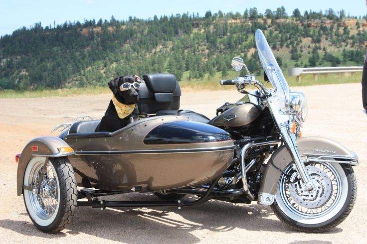... sidecars hd sidecar chains motorcycle awesome sidecar from ridebell