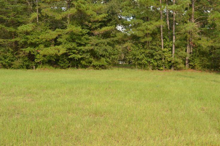 Dixie Plantation Rd lot A-4; 0.25 acre lot