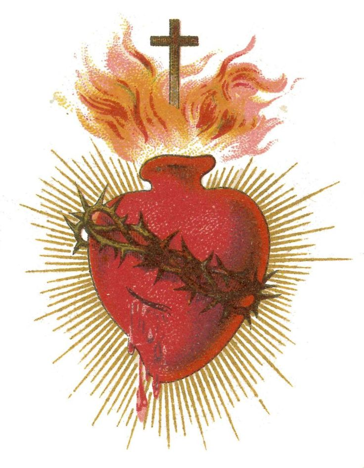 Video: How the Sacred Heart of Jesus Transformed My Life ...