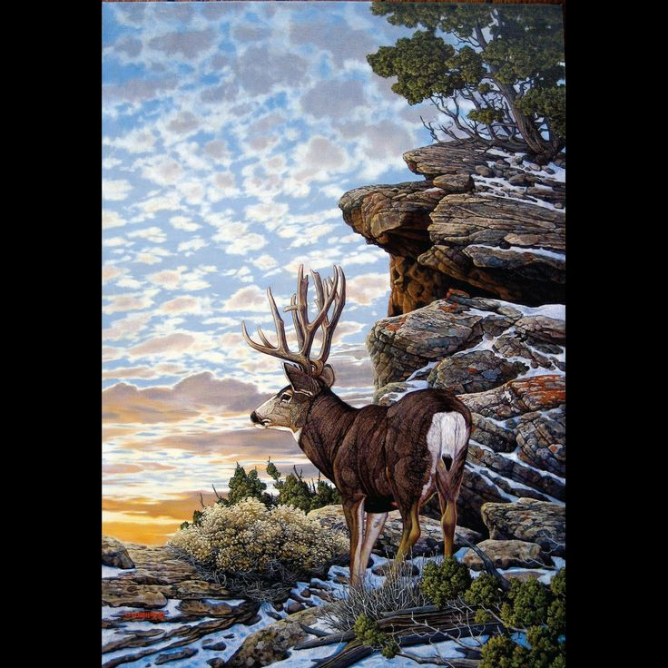 Fire Hole - mule deer buck painting by Scot Weir | Turpin Gallery