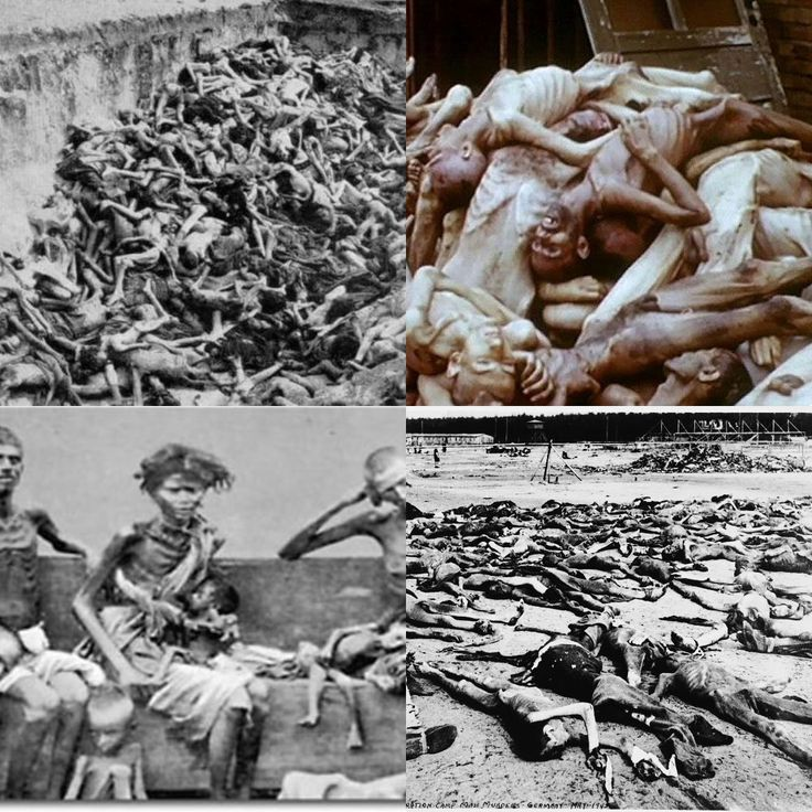 role of adolf hitler in holocaust They knew that adolf hitler had repeatedly forecast the extermination of every jew on german soil they knew these details because they had read about them  gellately, professor in holocaust.