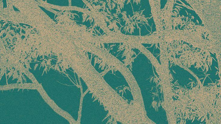 Eucalypt Branches, White on Aqua