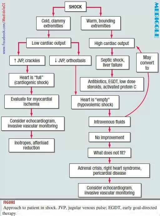 anaphylactic shock concept map The surgery department regarding treating anaphylactic reaction in surgical  patients per  the continuing education should be based upon the concepts of  adult learning,  blue dye for lymphatic mapping in breast cancer.