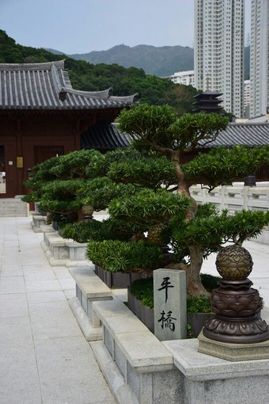Entry to the Chi Lin Nunnery