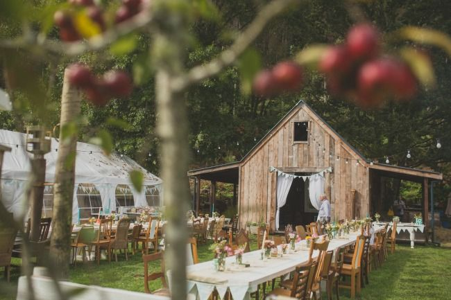 Truly & Madly Blog | 14 Top Rustic Wedding Venues in New Zealand #weddingvenue #rustic #venue #nzvenue