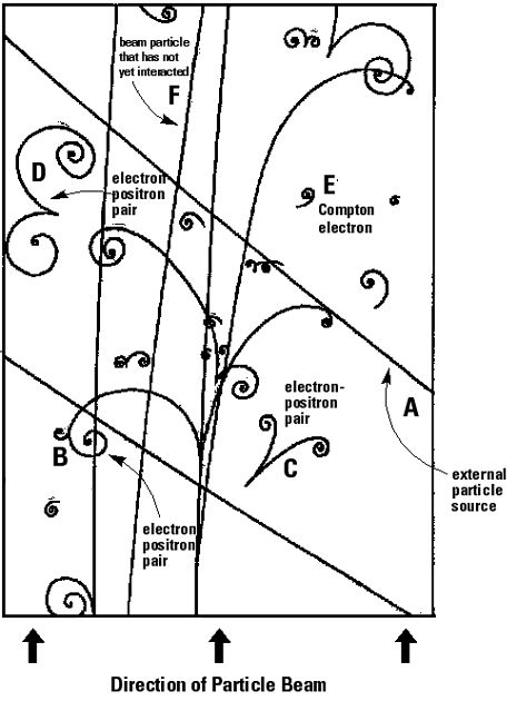 Bubble Chamber Particle Tracks Diagram Science