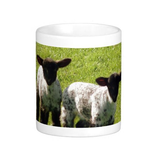 Two Cute Lambs Mug