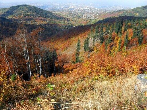Widok na Bielsko-Biala